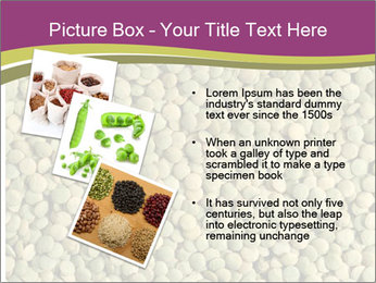 Green Legume PowerPoint Template - Slide 17