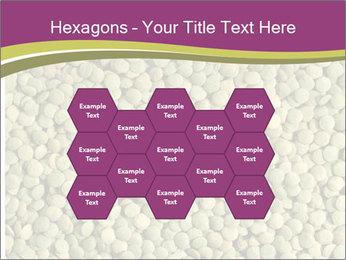 Green Legume PowerPoint Templates - Slide 44