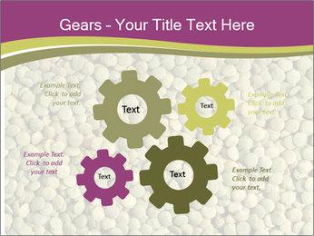 Green Legume PowerPoint Templates - Slide 47