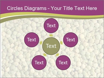 Green Legume PowerPoint Templates - Slide 78