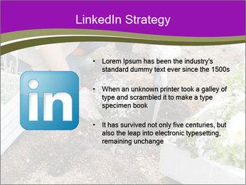 Lifestyle Of Gardener PowerPoint Template - Slide 12