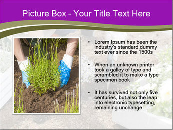 Lifestyle Of Gardener PowerPoint Template - Slide 13