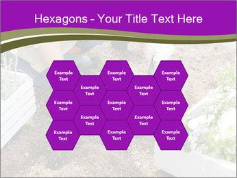 Lifestyle Of Gardener PowerPoint Templates - Slide 44