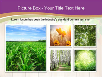 Cute Card On Wooden Board PowerPoint Templates - Slide 19