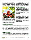 0000088838 Word Templates - Page 4