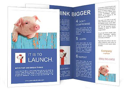 0000088840 Brochure Templates