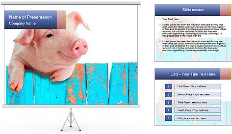 Cute Pink Piggy PowerPoint Template