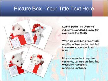 Cute Pink Piggy PowerPoint Template - Slide 23