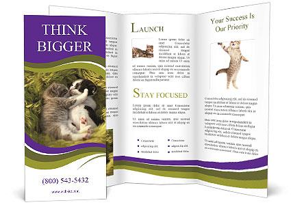 0000088844 Brochure Template
