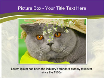 Cuddling Kittens PowerPoint Template - Slide 16