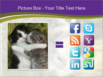 Cuddling Kittens PowerPoint Template - Slide 21