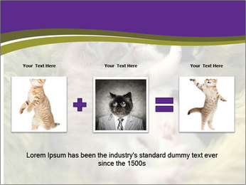 Cuddling Kittens PowerPoint Template - Slide 22