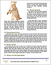 0000088844 Word Template - Page 4