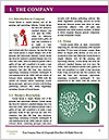 0000088851 Word Template - Page 3