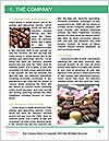 0000088852 Word Template - Page 3