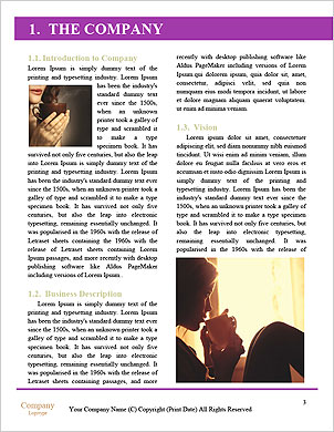 0000088853 Word Template - Page 3