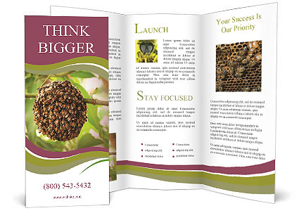 0000088857 Brochure Template