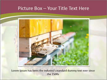 Bee Nest PowerPoint Template - Slide 15