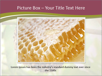 Bee Nest PowerPoint Template - Slide 16