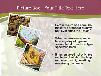 Bee Nest PowerPoint Template - Slide 17