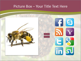 Bee Nest PowerPoint Template - Slide 21