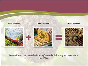 Bee Nest PowerPoint Template - Slide 22