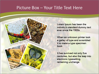 Bee Nest PowerPoint Template - Slide 23