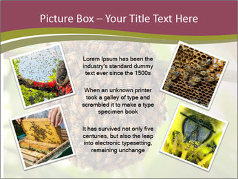 Bee Nest PowerPoint Template - Slide 24