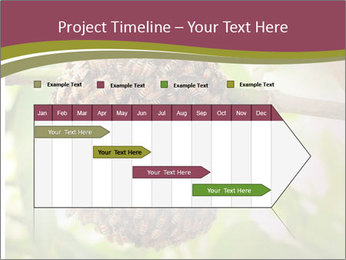 Bee Nest PowerPoint Template - Slide 25