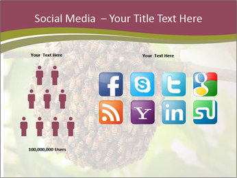 Bee Nest PowerPoint Template - Slide 5