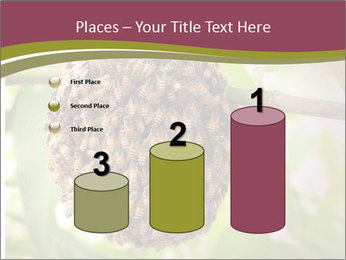 Bee Nest PowerPoint Template - Slide 65