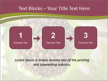 Bee Nest PowerPoint Template - Slide 71
