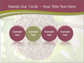 Bee Nest PowerPoint Template - Slide 76