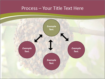 Bee Nest PowerPoint Template - Slide 91