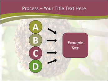 Bee Nest PowerPoint Template - Slide 94