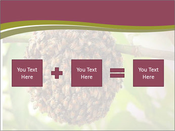 Bee Nest PowerPoint Template - Slide 95