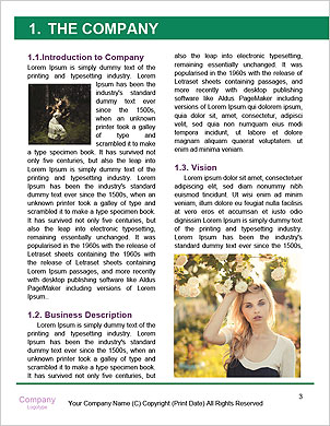 0000088858 Word Template - Page 3