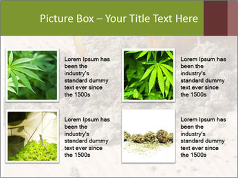 Ganja PowerPoint Template - Slide 14