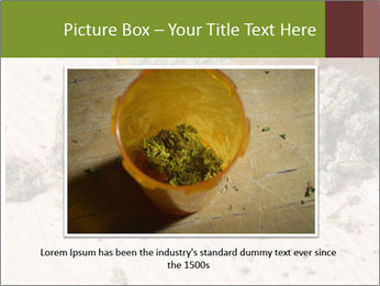 Ganja PowerPoint Template - Slide 15