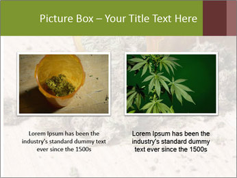 Ganja PowerPoint Template - Slide 18