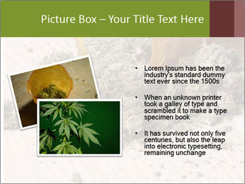 Ganja PowerPoint Template - Slide 20