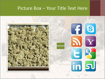 Ganja PowerPoint Template - Slide 21