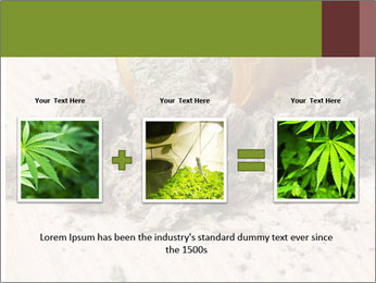 Ganja PowerPoint Template - Slide 22