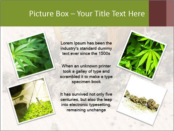 Ganja PowerPoint Template - Slide 24