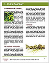 0000088870 Word Templates - Page 3