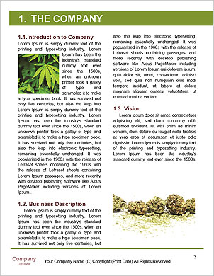 0000088870 Word Template - Page 3