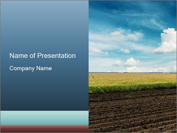 Yellow Field PowerPoint Template