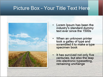 Yellow Field PowerPoint Templates - Slide 13