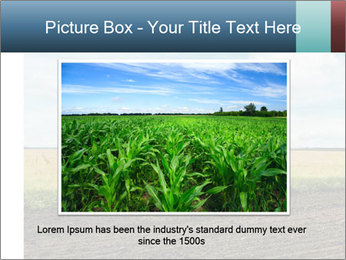 Yellow Field PowerPoint Templates - Slide 16