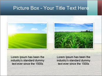Yellow Field PowerPoint Templates - Slide 18